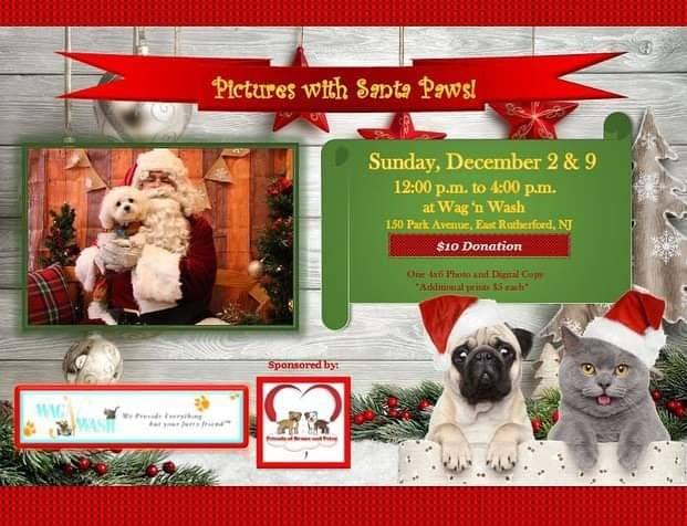 Pictures with Santa Paws Wag & Wash